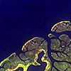 #6 | Receding sea | De veranderende kustlijn